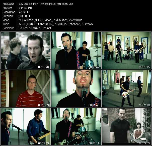 Reel Big Fish video screenshot