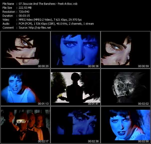 Siouxsie And The Banshees video screenshot