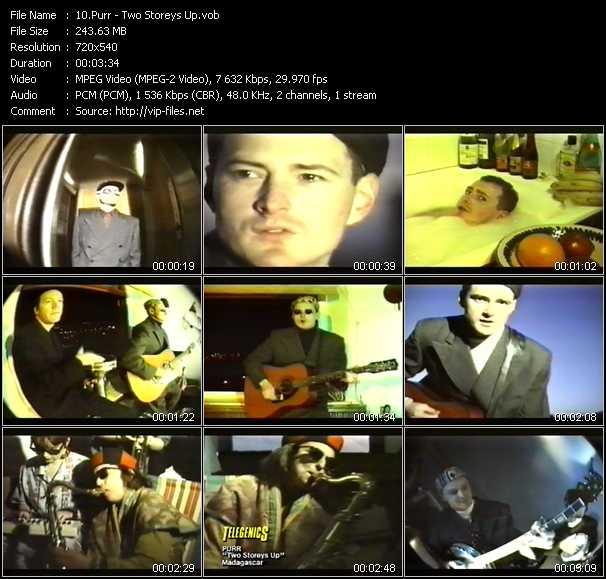 Purr video screenshot