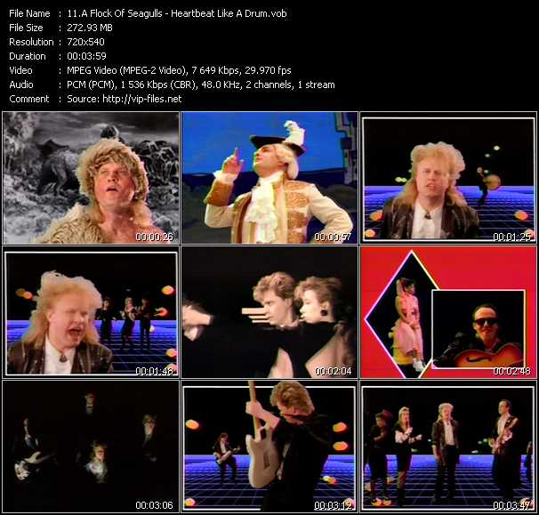 A Flock Of Seagulls video screenshot