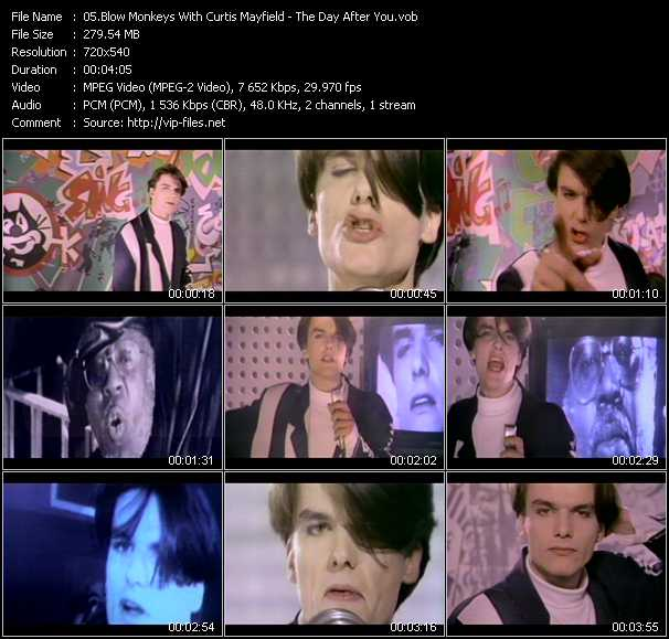 Blow Monkeys With Curtis Mayfield video screenshot