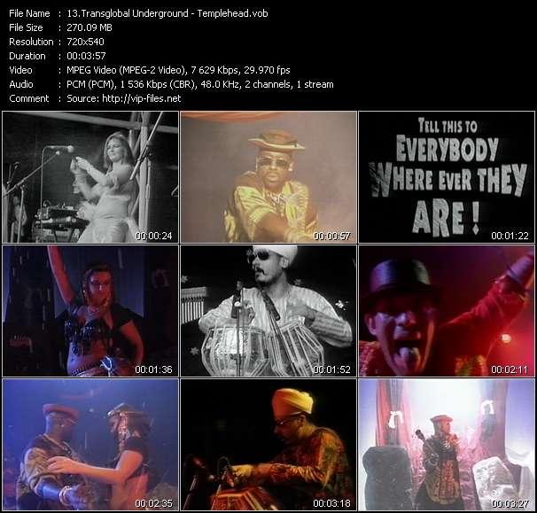 Transglobal Underground video screenshot