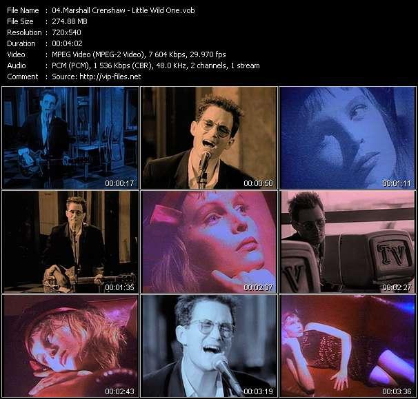 Marshall Crenshaw video screenshot