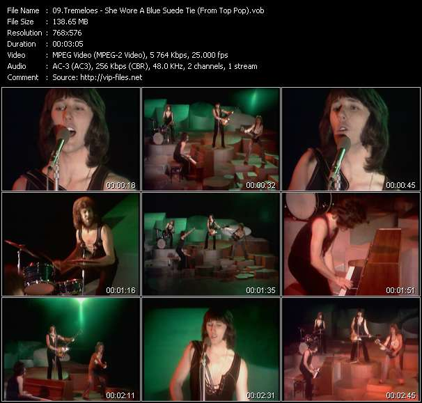 Tremeloes video screenshot