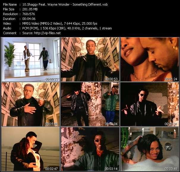 Shaggy Feat. Wayne Wonder video screenshot
