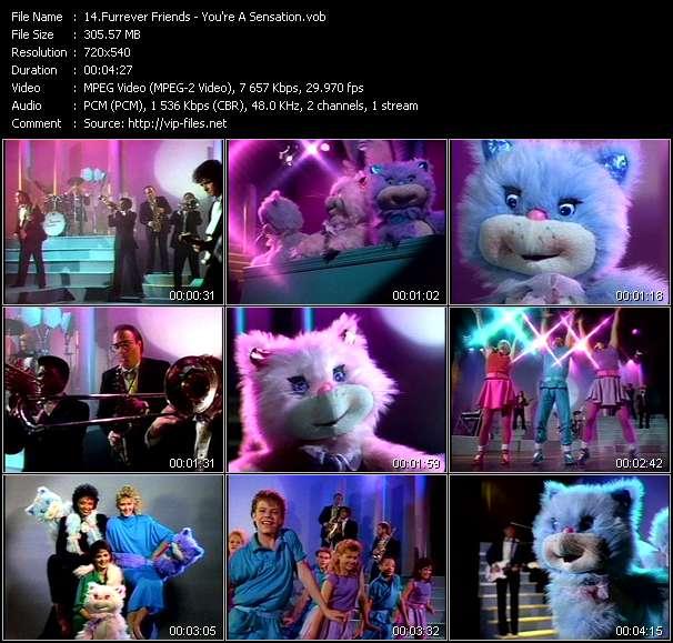 Furrever Friends video screenshot
