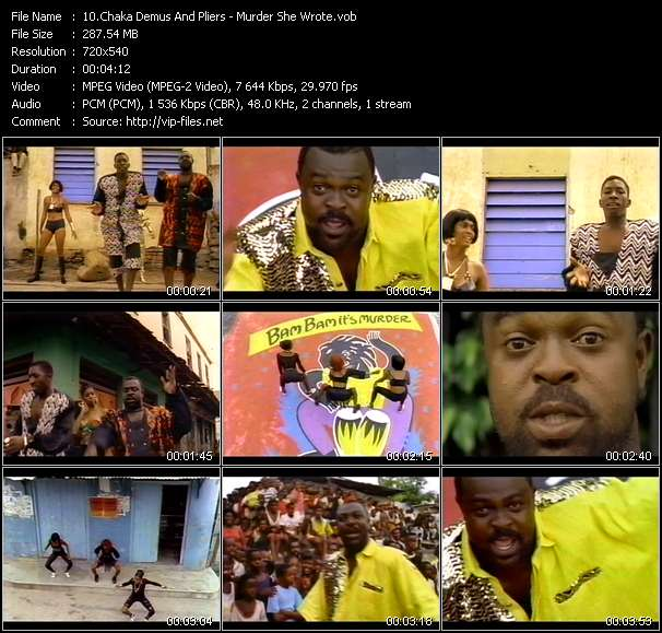 Chaka Demus And Pliers video screenshot