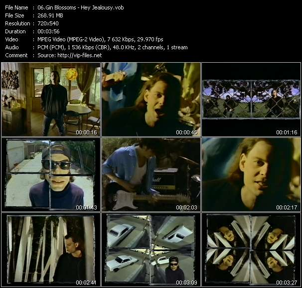 Gin Blossoms video screenshot