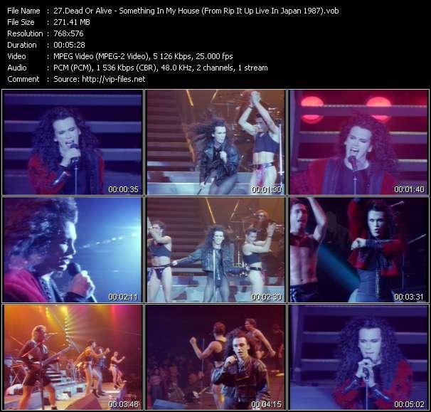 Dead Or Alive video screenshot