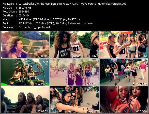 Laidback Luke And Marc Benjamin Feat. N.U.M. video screenshot