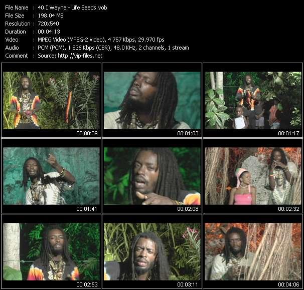 I Wayne video screenshot