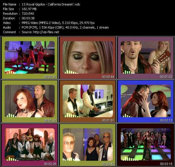 Royal Gigolos video screenshot