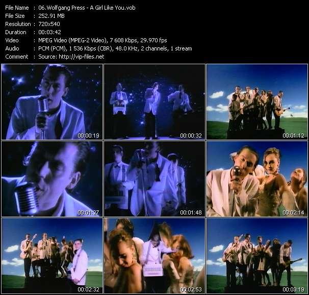 Wolfgang Press video screenshot