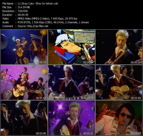 Stray Cats video screenshot