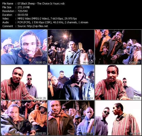 Black Sheep video screenshot