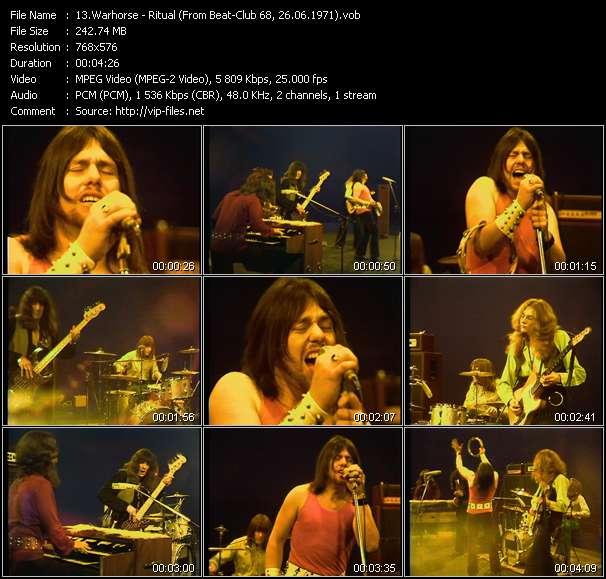 Warhorse video screenshot