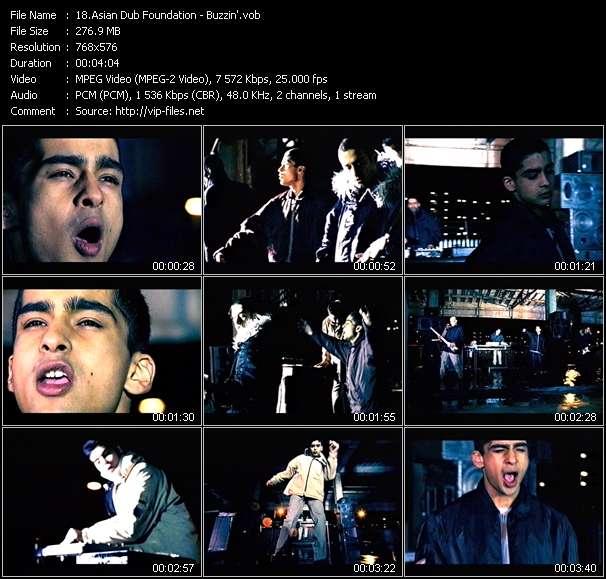 video Buzzin' screen