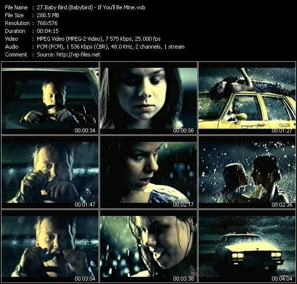 Baby Bird (Babybird) video screenshot