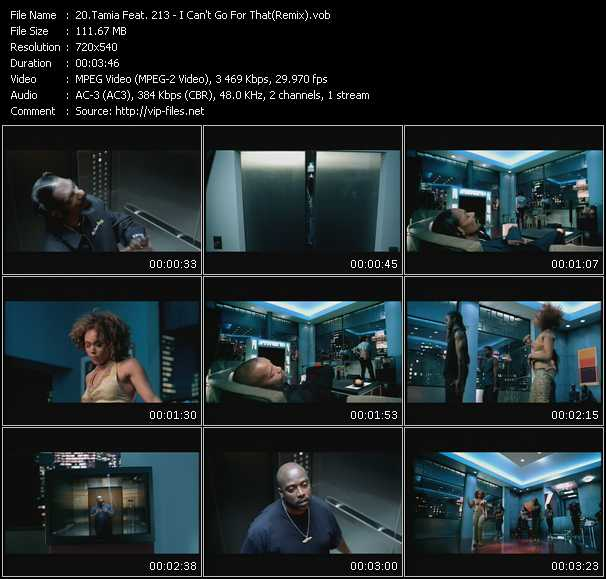 Tamia Feat. 213 video screenshot