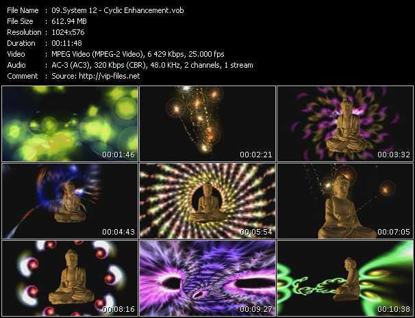 System 12 video screenshot