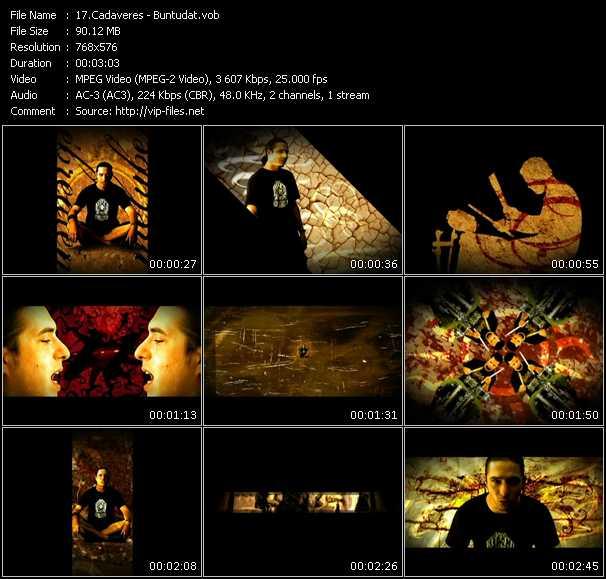 Cadaveres video screenshot