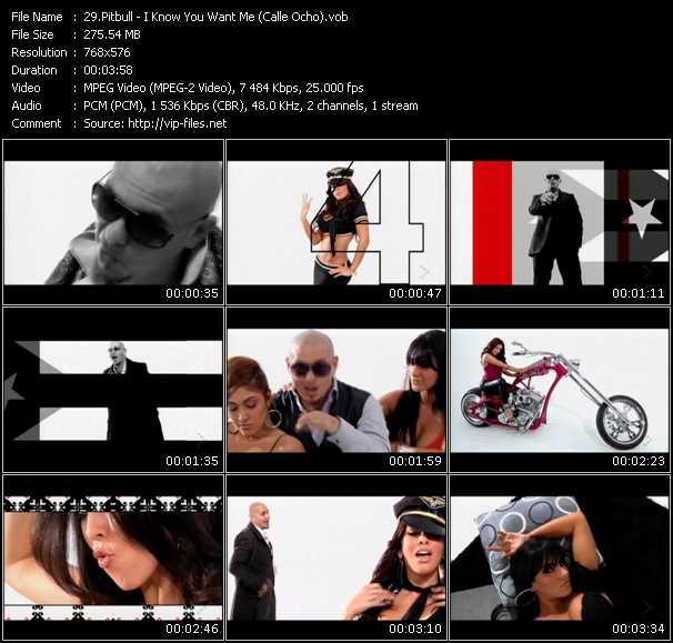 Pitbull video screenshot