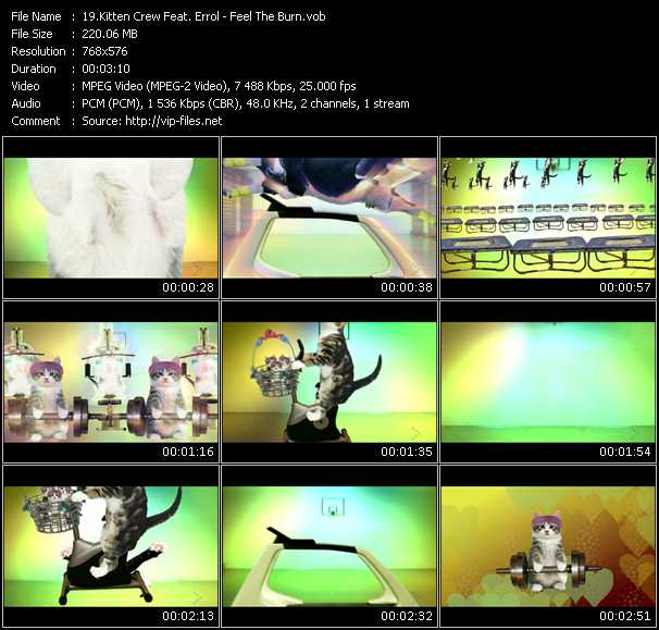 Kitten Crew Feat. Errol video screenshot