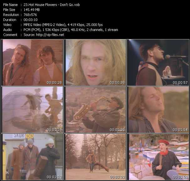 Hothouse Flowers video screenshot