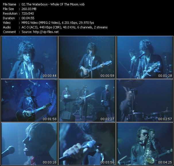 Waterboys video screenshot