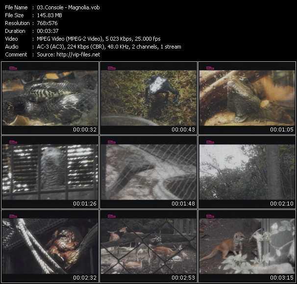 Console video screenshot