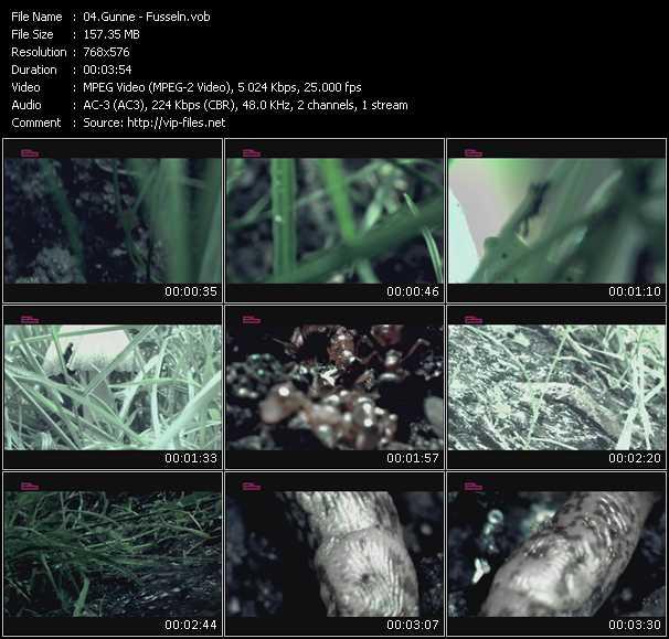 Gunne video screenshot