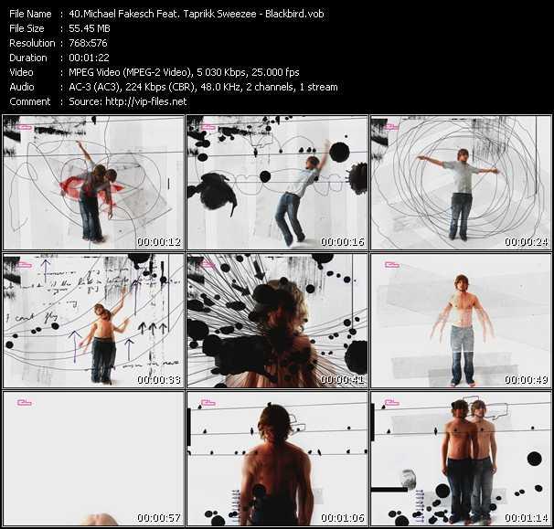 Michael Fakesch Feat. Taprikk Sweezee video screenshot