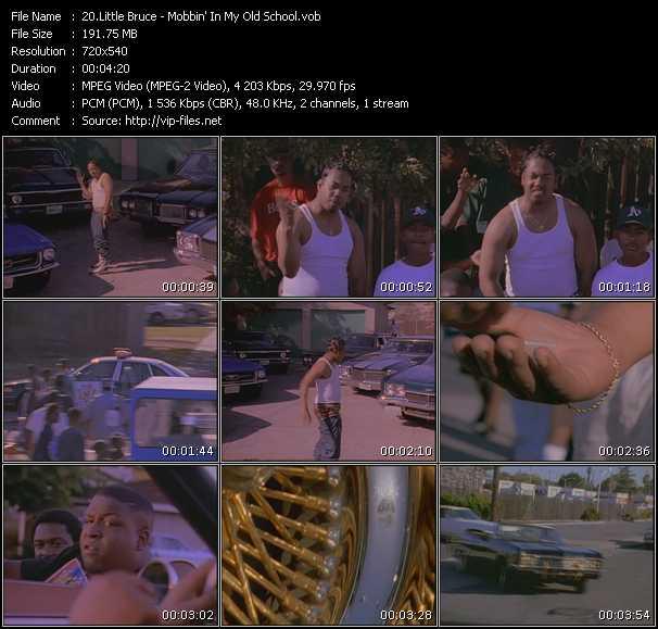 Little Bruce video screenshot