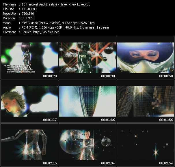 Hardwell And Greatski video screenshot