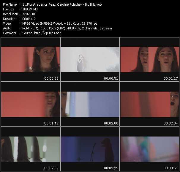 Flosstradamus Feat. Caroline Polachek video screenshot