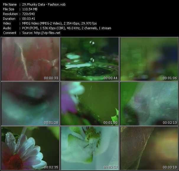 Phunky Data video screenshot