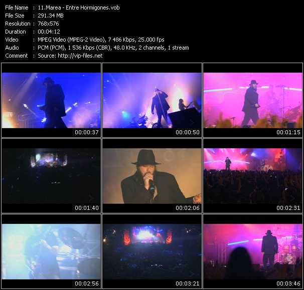 Marea video screenshot