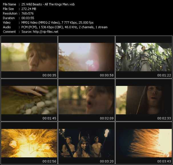Wild Beasts video screenshot