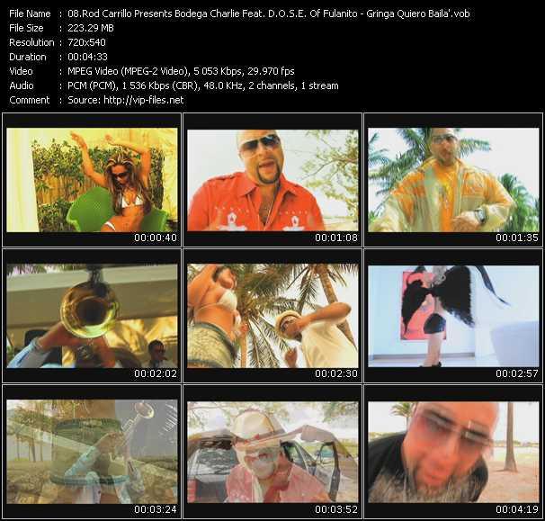 video Gringa Quiero Baila' screen