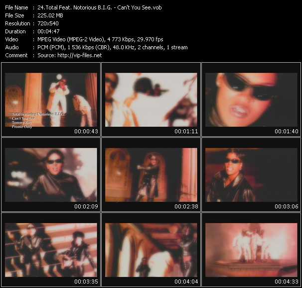 Total Feat. Notorious B.I.G. video screenshot
