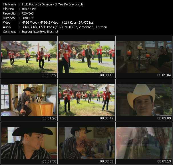 El Potro De Sinaloa video screenshot