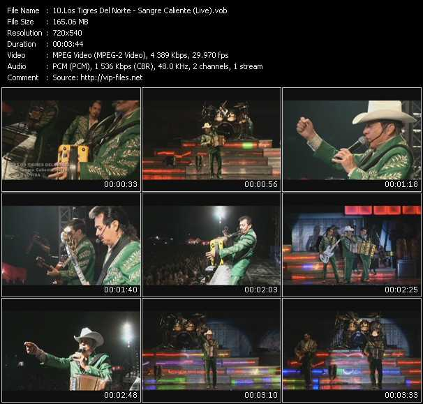 Los Tigres Del Norte video screenshot