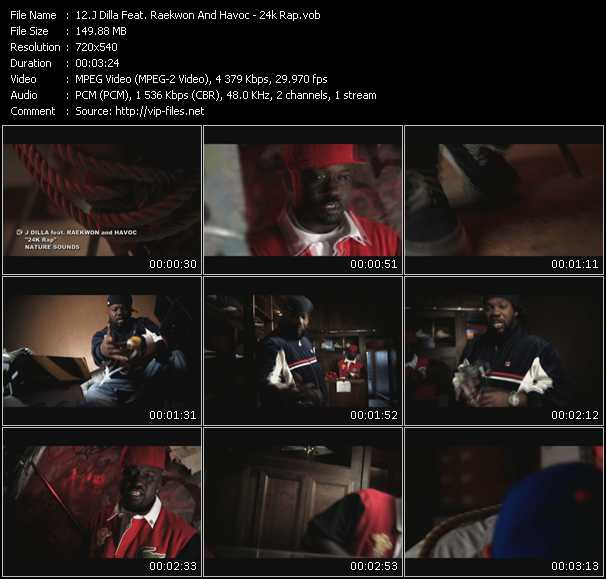 J Dilla Feat. Raekwon And Havoc video screenshot