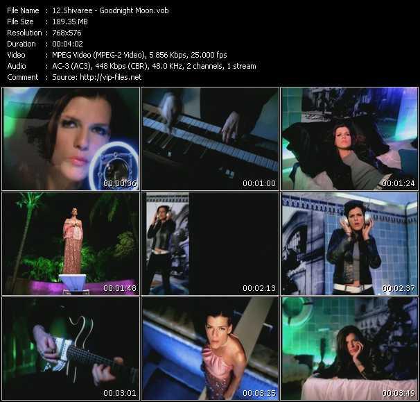 Shivaree video screenshot