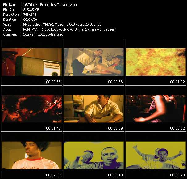Triptik video screenshot