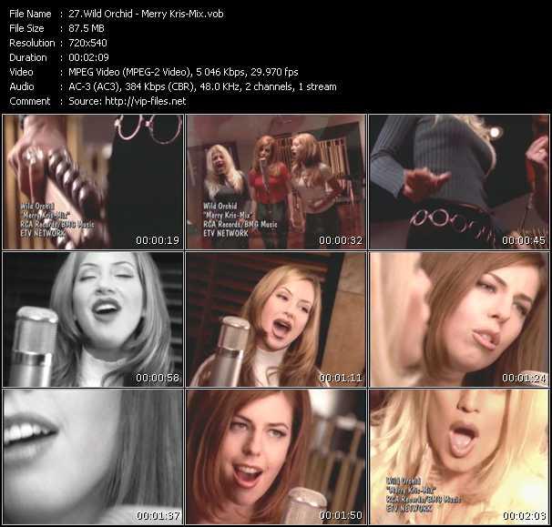 Wild Orchid video screenshot