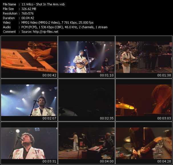 Wilco video screenshot