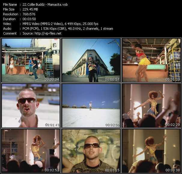 Collie Buddz video screenshot