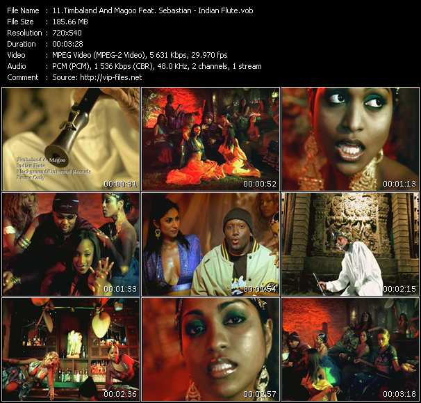 video Indian Flute screen