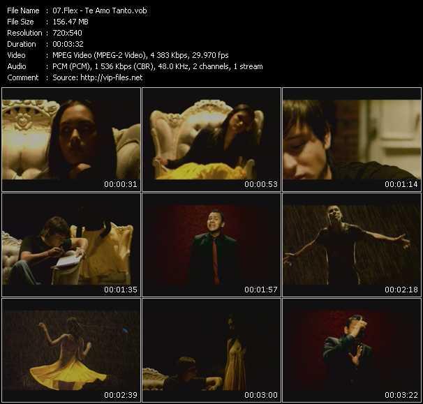 Flex video screenshot